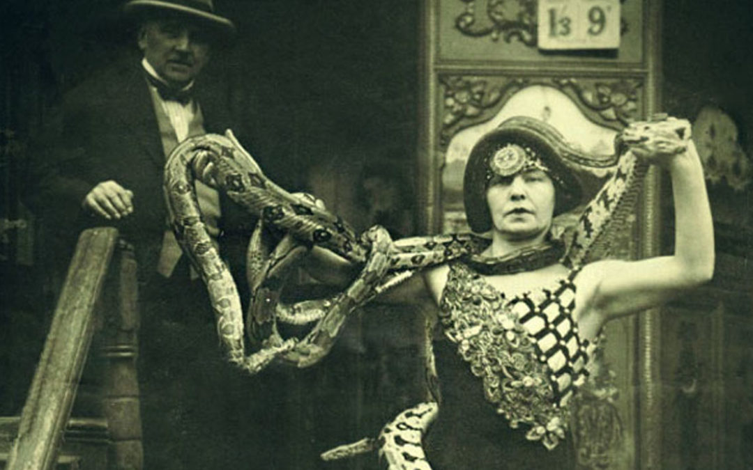 Lady and the Serpent